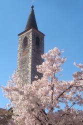Turm u. Baum h