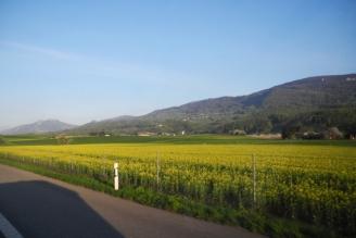Westschweiz