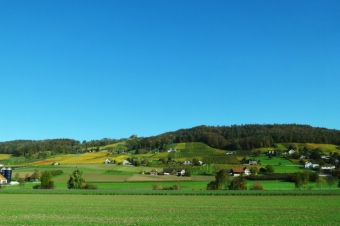 Rebberge am Ottenberg