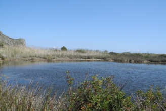 Lagune 2