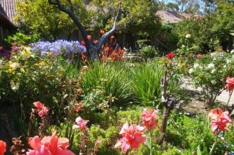 Mission Garten