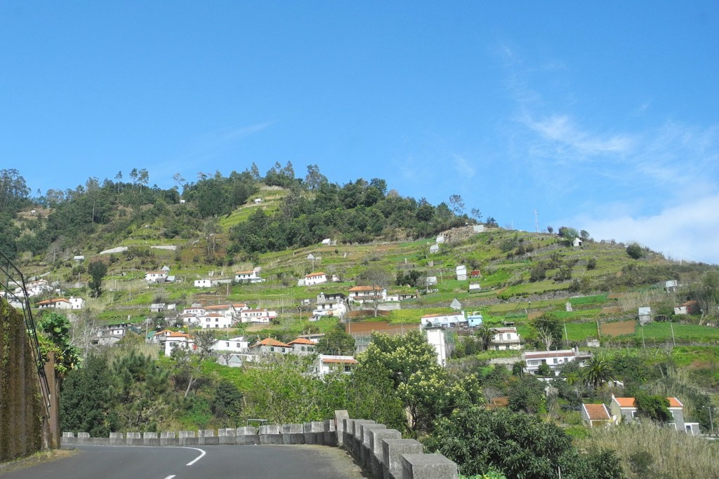 Madeira 176