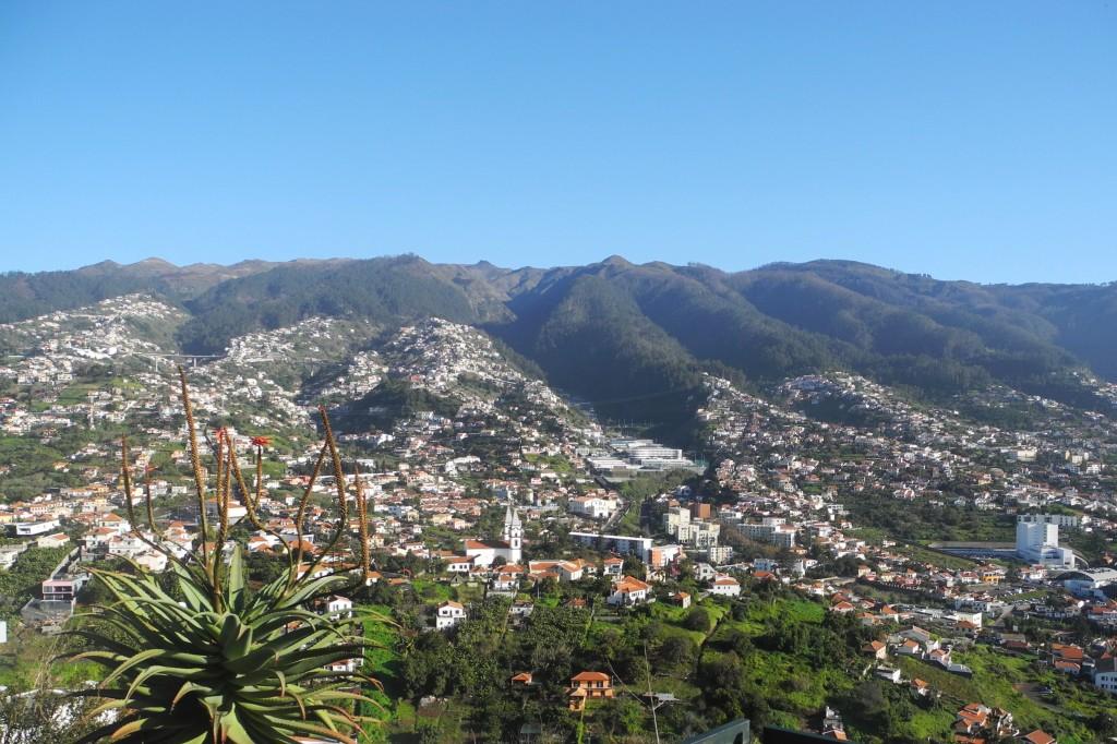 Madeira 391