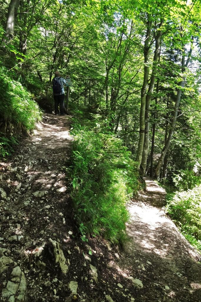 Mittenwald 1 035