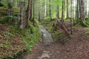 Mittenwald 6 Regentag 066