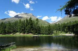 St-Moritz 2 Corvatsch 102