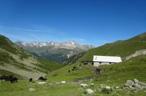 St.Moritz 3 Muottas 019