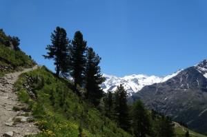 St.Moritz 3 Muottas 087