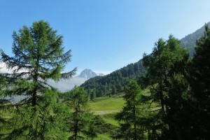 St.Moritz 4 Cavloccio 013
