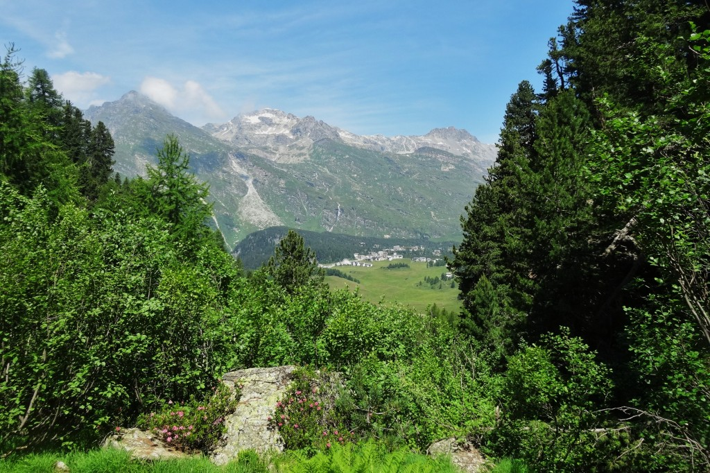 St.Moritz 4 Cavloccio 072