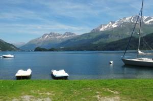 St.Moritz 4 Cavloccio 101