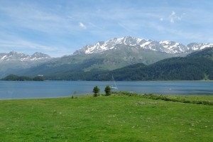 St.Moritz 4 Cavloccio 104