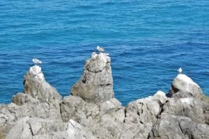 Italien 11 Cefalu 1 077