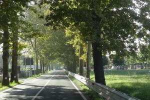 Italien 3 Urbino 262