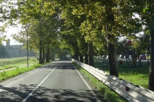Italien 3 Urbino 263
