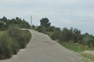 Italien 4 Roseto und Gargano 401