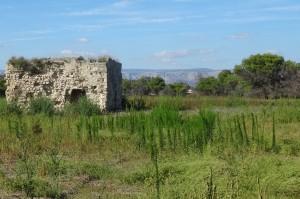 Italien 5 Castel, Trulli,Gallipoli 025