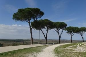 Italien 5 Castel, Trulli,Gallipoli 118