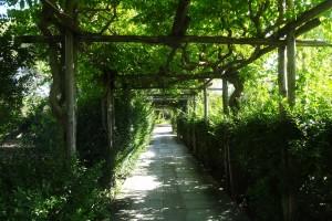 Italien 9 Thuria 004
