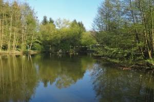 Münstertal Erlebnispark 002