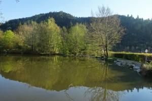 Münstertal Erlebnispark 004