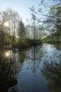 Münstertal Erlebnispark 007
