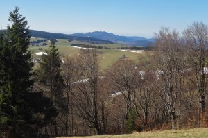 Münstertal Erlebnispark 013