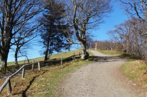 Münstertal Erlebnispark 021