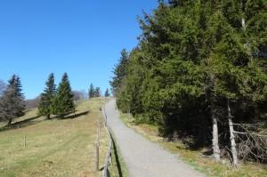 Münstertal Erlebnispark 035