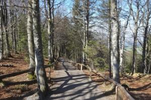 Münstertal Erlebnispark 040