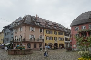 Münstertal - Freiburg 014