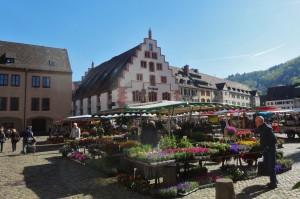 Münstertal-Schlossberg,Krotzingen 021