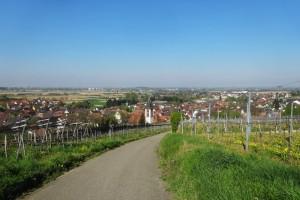 Münstertal-letzter Tag 009