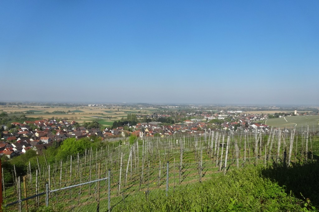Münstertal-letzter Tag 024