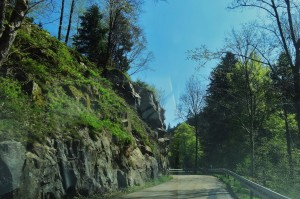 Münstertal-letzter Tag 087