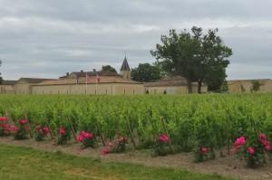 Frankreich bis Arcachon 043