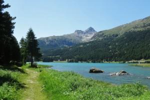 St.Moritz 1 077