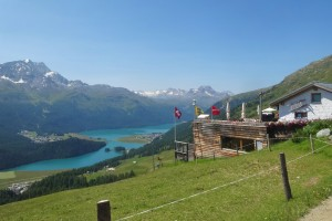 St.Moritz 4 Corviglia 064