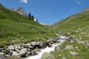 St.Moritz 4 Corviglia 092