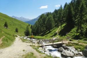 St.Moritz 4 Corviglia 095