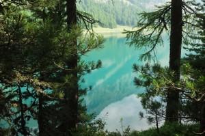 St.Moritz 5 Sils 034