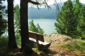St.Moritz 5 Sils 039