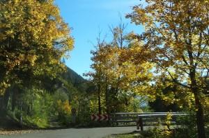 Mittenwald 7 B Achensee 026