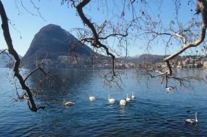 11.2016-3-19 Lugano 090