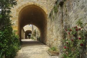 25. 2016-5-12 Gageac Castelnaud 115