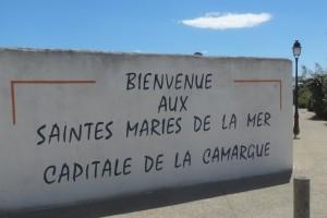 4. 2016-4-26bis Camargue 139