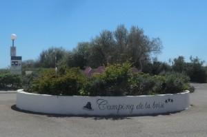 4. 2016-4-26bis Camargue 140