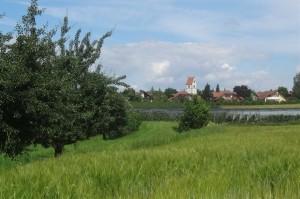 2016-06-27Markdorf 7 027