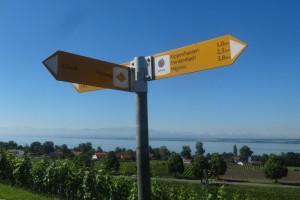 Markdorf 2 Wanderung 079