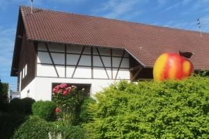 Markdorf 8 050